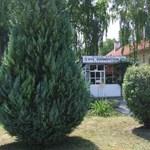Letartóztatták a kaposvári gyermekotthonban történt bántalmazás 17 éves gyanúsítottját