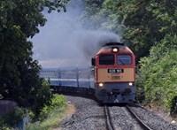 Néhány vonat olcsóbb lesz a Balatonnál