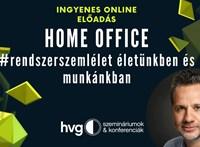 Tőle tanulhat: Kenyeres András, a vízilabda-válogatott mentális trénere mesél home office-tapasztalatairól