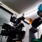 """""""Szándékos hazugság"""" volt: váratlan mutációkat idézhetett elő a génszerkesztés a kínai babáknál"""