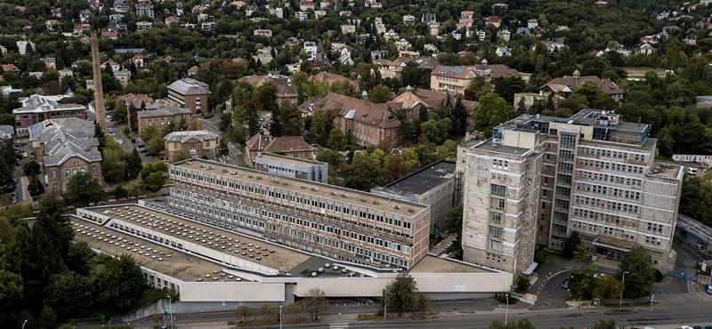 Úgy cáfolja a klímaparát a Semmelweis Egyetem, hogy közben elismeri