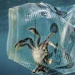 Úgysem hiszi el, percenként mennyi műanyag palack kerül a Földközi-tengerbe