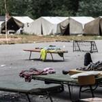 A leguán meghal, a menekültek kirepülnek
