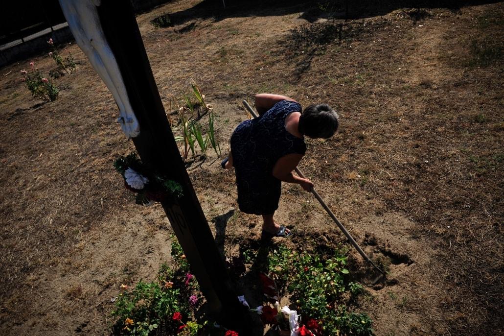 Sajtófotó 2011 - Nagyítás-fotógaléria - Természet és tudomány - sorozat - 2. helyezett: Homokhátság