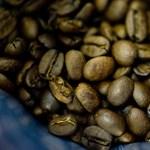 Harcot indít Bécs az eldobható kávéspoharak ellen