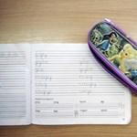 Kik kapnak ingyen tankönyvet, iskolakezdési támogatást és beiskolázási segélyt?