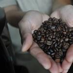 Országos hálózattal tarolna a nagyon menő magyar kávézó