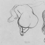 Szerdától Klimt-rajzok láthatók az Albertinában