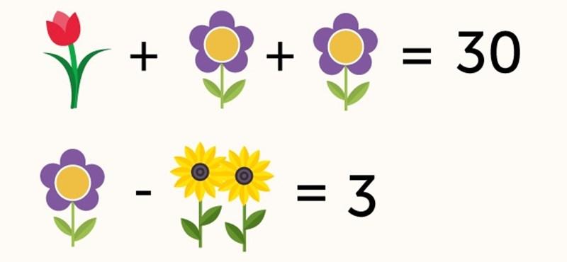 Meg tudnátok oldani ezt a matekpéldát?