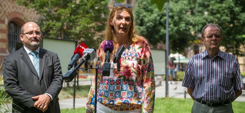 Egy héttel elhalasztják a ferencvárosi előválasztást