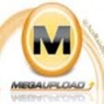 Beszólt a Megaupload a jogvédőknek – nem izgulnak