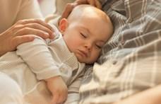 Óriásit buktak a bébiételek: 95 százalékuk tartalmazott káros anyagot