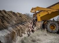 Exhumálni akarják a Dániában tömegsírba temetett, koronavírusos nyérceket