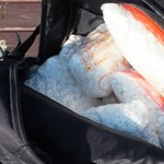 Rhinostop: 62 kiló ecstasyt találtak egy bőröndben az M1-esen – fotó