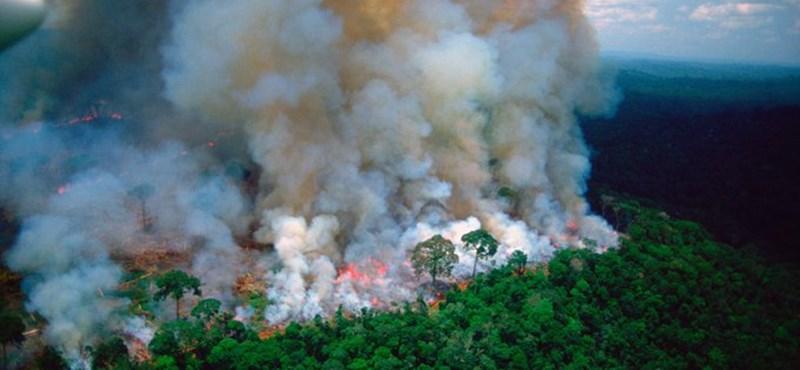 A brazil kormány mégsem hagy fel az Amazonas védelmével – legalábbis szavakban
