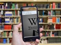 20 éves lett a Wikipédia, amit ma is önkéntesek szerkesztenek