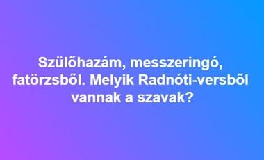 Szülőhazám, messzeringó, fatörzsből - Melyik Radnóti-versből idéztük ezeket a szavakat?