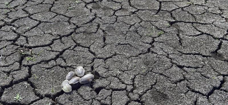 Minisztérium: Magyarország 2030-ra 90%-ban szén-dioxid- és karbonsemleges lesz