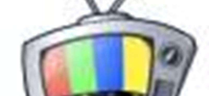 A tévézés jövője: a GoogleTV működés közben! – videóval