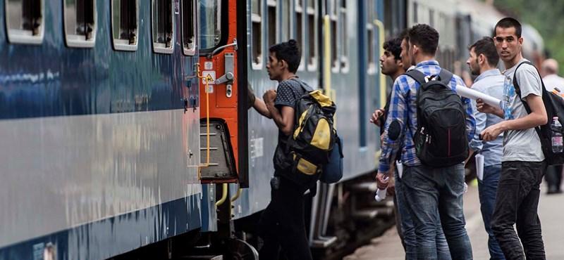 Egy átlagos napon ezer illegális bevándorlót szállít a MÁV