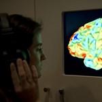 Nincs különbség a férfi és a női agy között