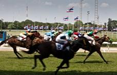 Először nyert olyan ló a brit-ír lóversenyek történetében, aminek 1 a 300-hoz esélyt adtak erre