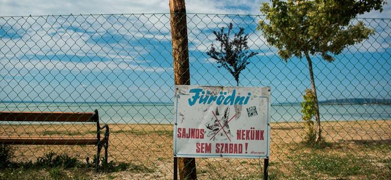 Balatoni nyár: kitört a Nagy Kenesei Strandháború - videóval