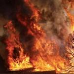 A magyar kormány csodaszerét vetette be Portugália a hőség miatt