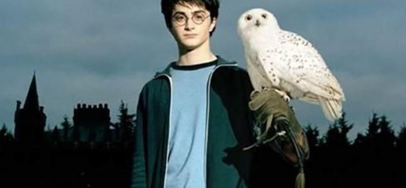 Minden Harry Potter rajongó álma - újabb első kiadás, ami milliókat ért egy aukción