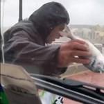 Videó: A partra fújta a halakat a vihar Máltán
