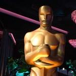 Csak mellőzött kisebbségeket foglalkoztató filmek kaphatják meg a legjobb filmnek járó Oscart