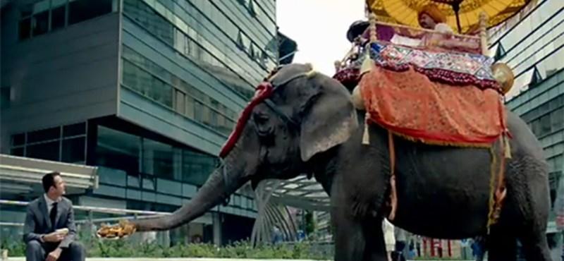 Spanyol reklámfilmben trappol a Kálvin tér elefántja (videó)