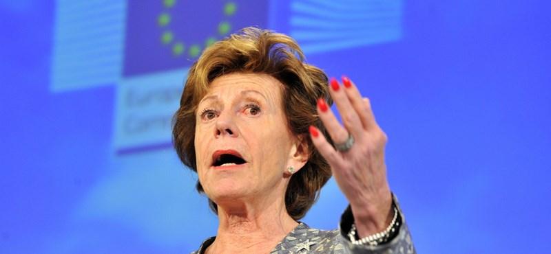 """""""Elszörnyedtem"""" - Neelie Kroes keményen kiosztja Bayer Zsoltot"""