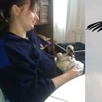 Törökországból mentik Eleket, a magyar gólyát