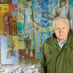 Sir David Attenborough könyörögve kér minket, hogy kapjuk össze magunkat