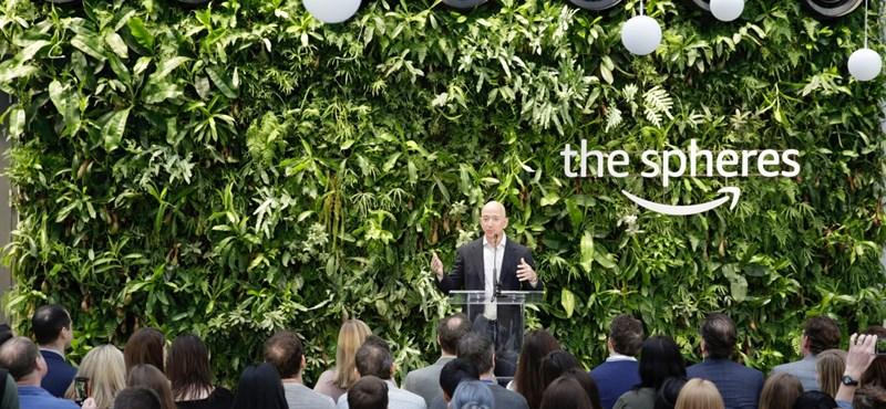 Esőerdőbe költöztette az Amazont Jeff Bezos