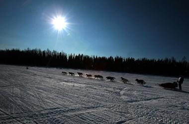 Alaszka már ingyen oltást kínál a turistáknak