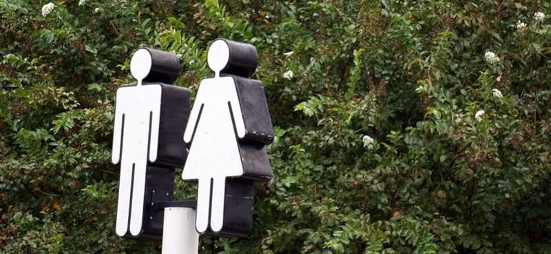 Megszüntették a gender szakot, vizsgálatot indít az ombudsman