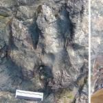 Kalapáccsal mentek neki egy értékes dinoszaurusz-lábnyomnak Ausztráliában – fotó