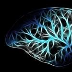 Szó szerint kitisztítja az agyunkat egy jó alvás