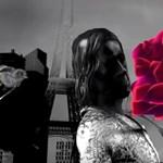 Párizs, kismadár, rózsa - hangulatos animáció készült Iggy Pop Piaf-feldolgozására