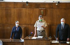 Vesztegetés miatt hét évet kapott Vizoviczki László