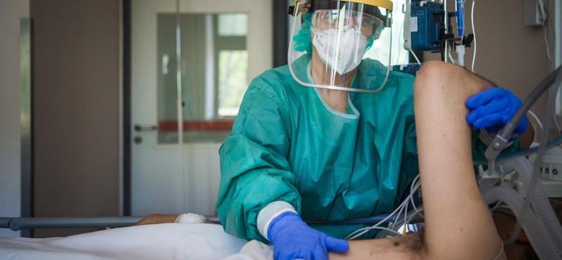 Nincs új halottja a koronavírusnak, 11 új fertőzöttet találtak