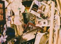 7 gyakori hiba a holmijaink szelektálásakor - Viszkok Fruzsi tanácsai