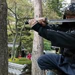 Égető nindzsahiány van egy Japán városban