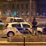 TEK-esek csaptak le a pisztolyos férfit elfogó rendőrökre a Keletinél