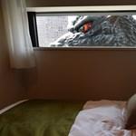Orbán Tapolcán, Godzilla és a kis Schumi a hét képein