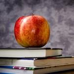 Lépéskényszer van: a teljes oktatási rendszert át kell alakítani
