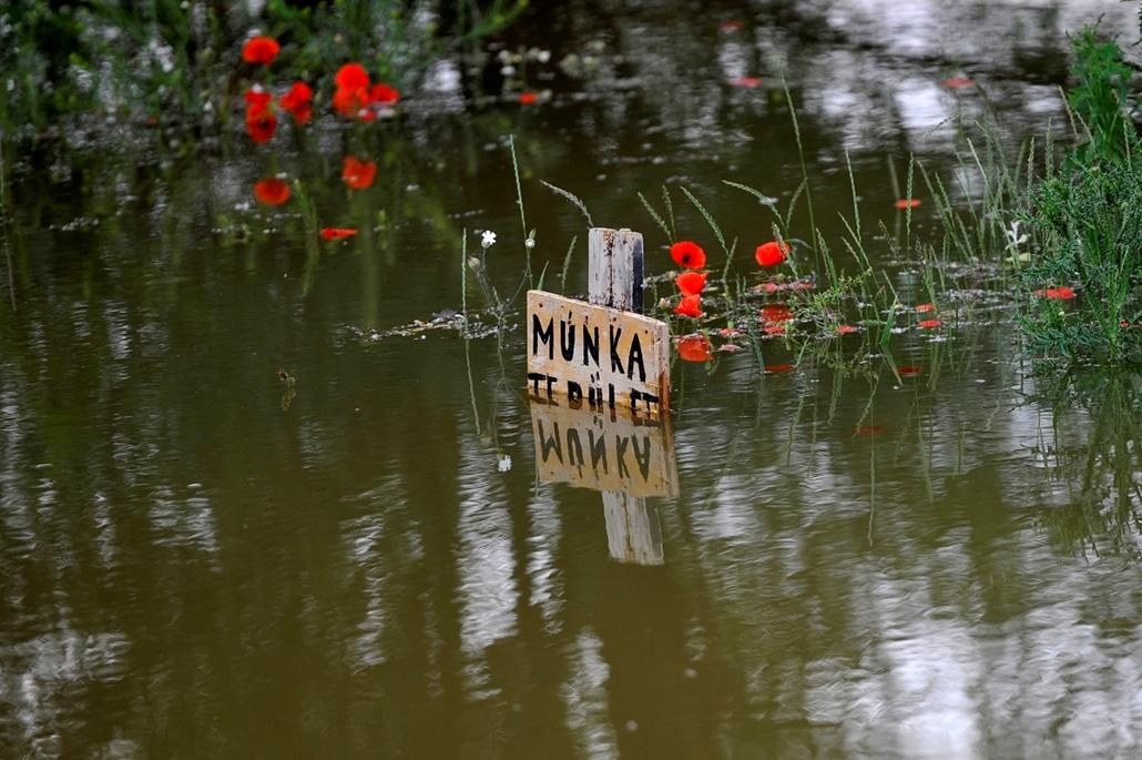 Árvíz 2013, Duna árvíz 2013 - Tát, 2013. június 7. A Duna áradása miatt elöntött terület a Komárom-Esztergom megyei Táton 2013. június 7-én.