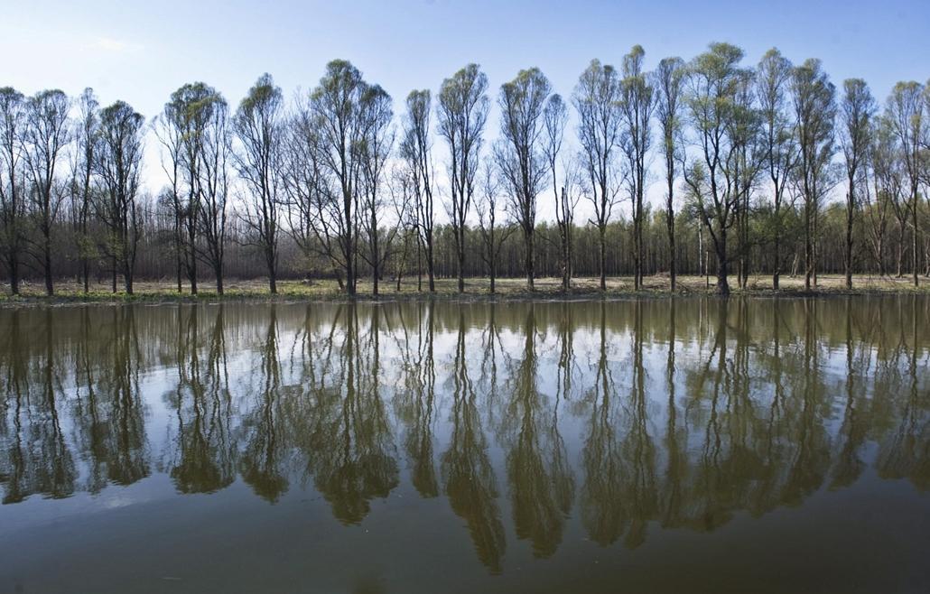 7képei - A Duna dél-magyarországi hullámterének fejlesztéséről tárgyaltak, Érsekcsanád, 2013. április 17. A Rezéti-Duna a Veránka-sziget mellett 2013. április 17-én. Az Országgyűlés fenntartható fejlődés bizottsága kihelyezett ülést tartott az Érsekcsanád